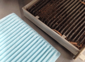 Cabin Filters: A Small Part with an Important Role